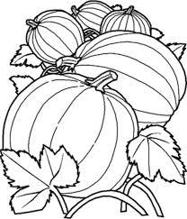 benefits mandala coloring adults arterey info
