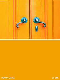 sw 6895 laughing orange google search colors pinterest