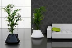 indoor modern planters discussed compare factory