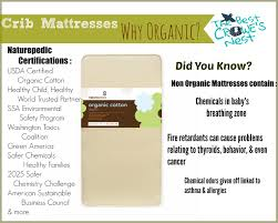 organic mattress crib crib mattresses why organic naturepedic review