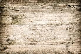 horizontal wood paneling cool houzz horizontal paneling design