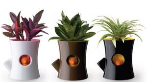 Home Decor With Plants Plant Pots Creative Design Large Garden Containers Best 25 Large