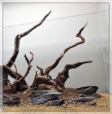 Driftwood Aquascape A Tgm Aquascape Journal By Tony Swinney The Green Machine