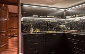Black Kitchen Cabinet Ideas Fascinating Spacious Best Black Kitchen Cabinets Design Ideas With