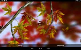imagenes de otoño para fondo de escritorio descargar autumn leaves 3d by alexander kettler para android gratis