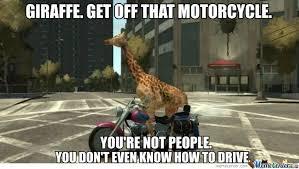 Funny Motorcycle Meme - funny giraffe askideas com