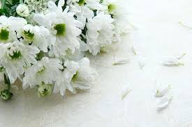 funeral arrangement funeral flower etiquette when where what to send