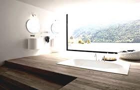 bathroom interior design designer ideas toilets and dfe classy