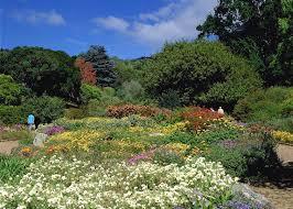 Kirstenbosch Botanical Gardens Kirstenbosch Botanical Gardens Audley Travel