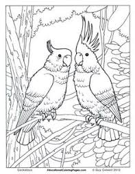wicked dragon coloring pages dragon coloring pages