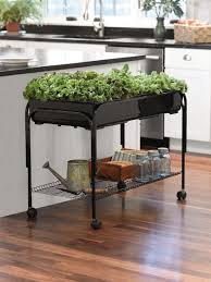 small indoor garden ideas indoor gardening great ideas to grow food inside
