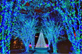atlanta botanical gardens transformed into winter wonderland gac