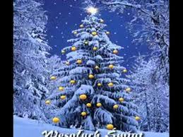wesołych świąt piosenka shakin merry