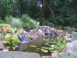 ornamental pond design ideas kitchen ideas