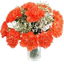 carnation flowers orange carnations fabulous flower delivery from clare florist