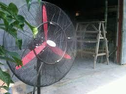 Termometer Kandang Ayam kandang ayam peralatan kandang alat peternakan tempat minum