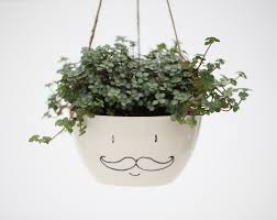 face planters cute handmade planter designs that will freshen up your decor