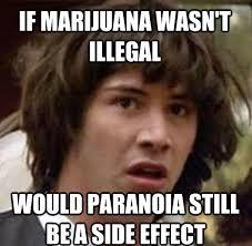 Stoner Meme - marijuana meme monday 6 3 paranoia edition highroulette com