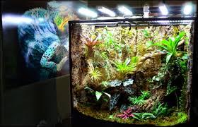 neherp vivarium lighting 101 everything you need to know to