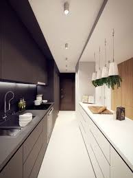 kitchen galley pictures fabulous home design