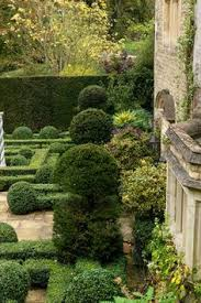 Abstract Topiary Design Phoenix Az