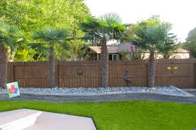 backyard landscaping ideas with palm trees thorplccom makeovers