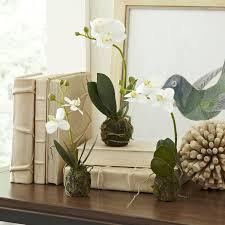 faux floral arrangements rustic faux orchid floral arrangement reviews birch