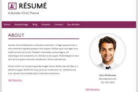 Great Sample Resumes by Sample Resume Websites Reentrycorps