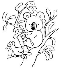 free printable koala coloring pages kids