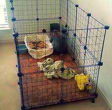 diy rabbit cage indoor diy rabbit cage hut step by step with