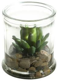artificial small agave plant succulent in candle jar traditional