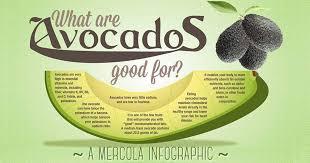 avocado uses and health benefits infographic mercola com