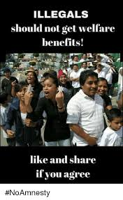 Welfare Meme - illegals should not get welfare benefits like and share if you