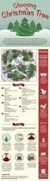 christmas fact 5 christmas facts and christmas tree