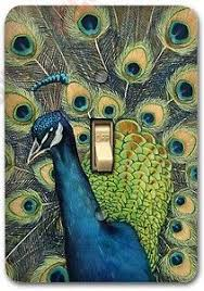 18 best peacock ideas u0026 decor images on pinterest peacock colors