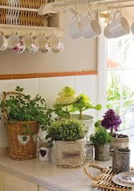 plantes cuisine d co maison 25 photos pour int grer les plantes et fleurs con meuble