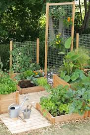 best 25 small gardens ideas on pinterest small garden design