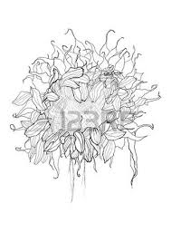 sunflower pen drawing vector sketch royalty free cliparts vectors