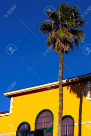 california style house california style southern scene a yellow house and a palm tree