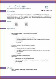 The Best Resume Format by The Best Resume Templates
