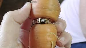 found 1 carrot ring two way npr