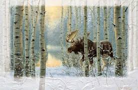 pumpernickel press wildlife cards on the move moose boxed christmas cards