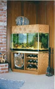 aqualease calgary u0027s premier custom aquarium lease u0026 maintenance
