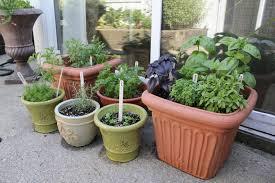 window herb gardens kitchen window herb pots caurora com just all about windows and doors