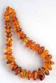 amber stone necklace images Rare amber necklace with a piece of natural history in every stone jpg