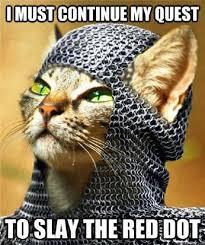 Cute Funny Cat Memes - cute funny cat meme