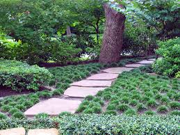 Houzz Garden Ideas Mondo Grass Instead Of Lawn From A Peterson Article On