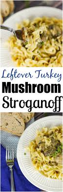 best 25 easy leftover turkey recipes ideas on