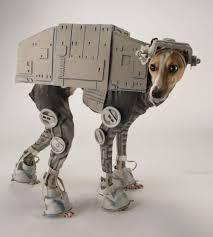 Husky Dog Halloween Costumes 30 Awesome Dog Cat Halloween Costumes Slideshow Cattime