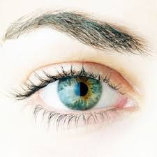 32 best i see you images on pinterest colored contacts cosplay